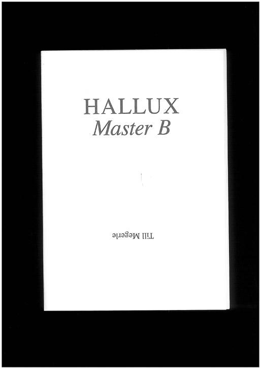 s_megerle-hallux-2010-bsp0.jpg